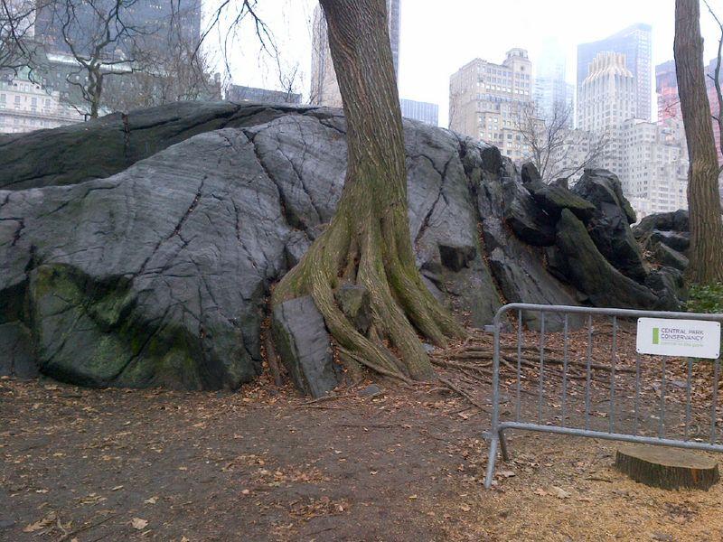 Manhattan-20111221-00039
